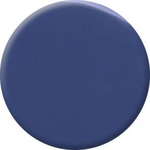 Deep Royal Blue Nail Polish